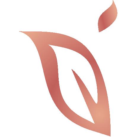 PEL_Logo_OK%20vec%20RVB%20-%20Copie.png