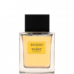 MR BALMAIN EDT VAPO      100 ML